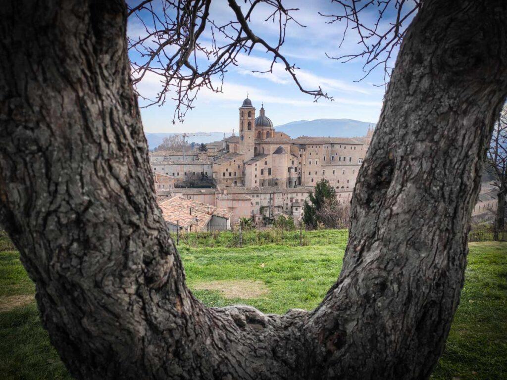 Parco della Resistenza, vista sul borgo di Urbino