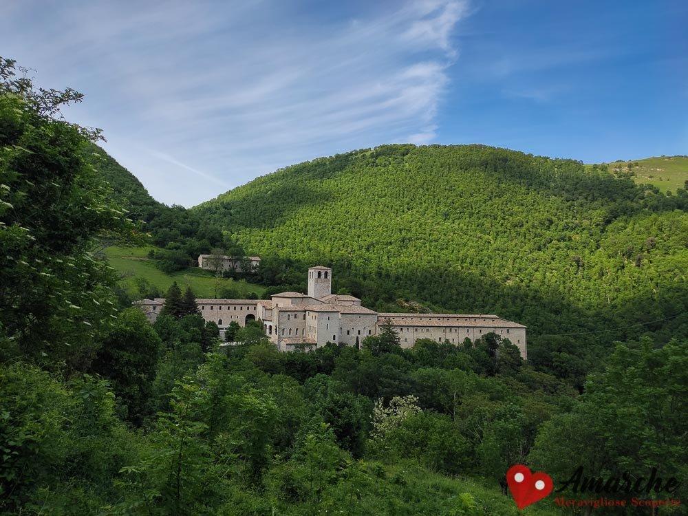 Il Monastero di Fonte Avellana immerso nel bosco