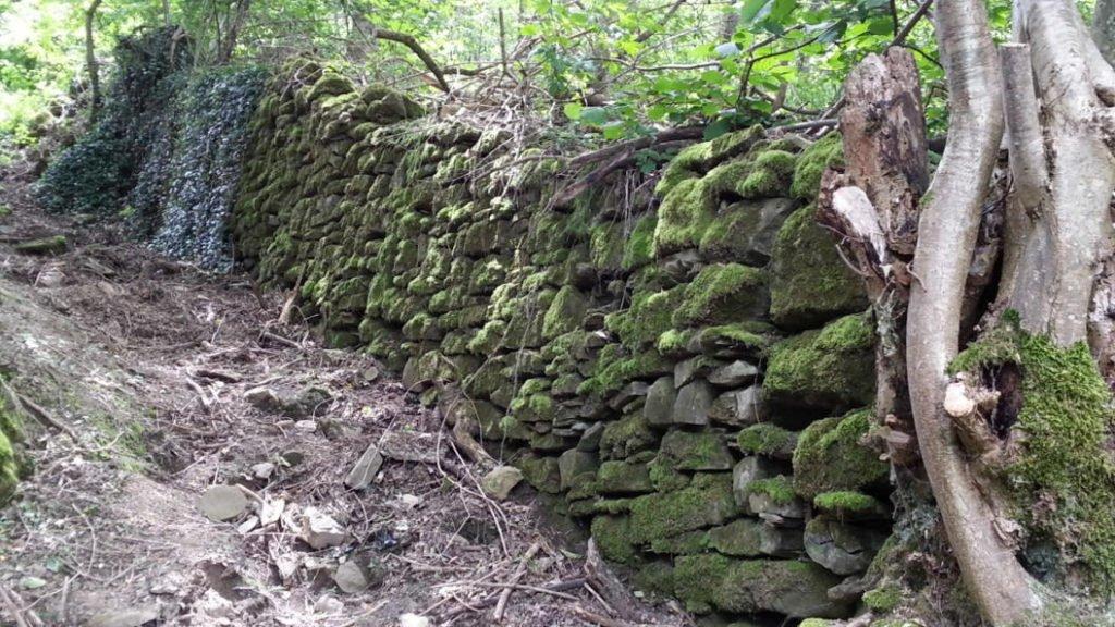 Trekking Arquata del Tronto, sentiero anello Spelonga